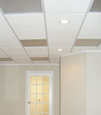 Basement Ceiling Tiles for a project we worked on in Allison Park, Pennsylvania